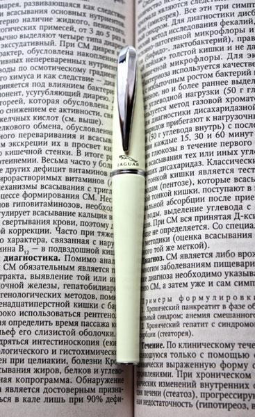 перьевая ручка Jaguar Concept Ivory / fountain pen
