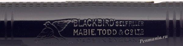 Mabie Todd Blackbird (England)