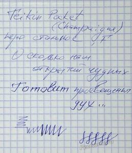 образец письма ручки Teikin / writing sample