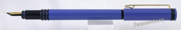 перьевая ручка Waterman Forum / fountain pen